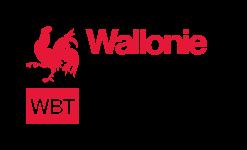 Logo Wallonie Belgique Tourisme